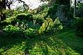 150510 182112 Giardino di Ninfa.jpg