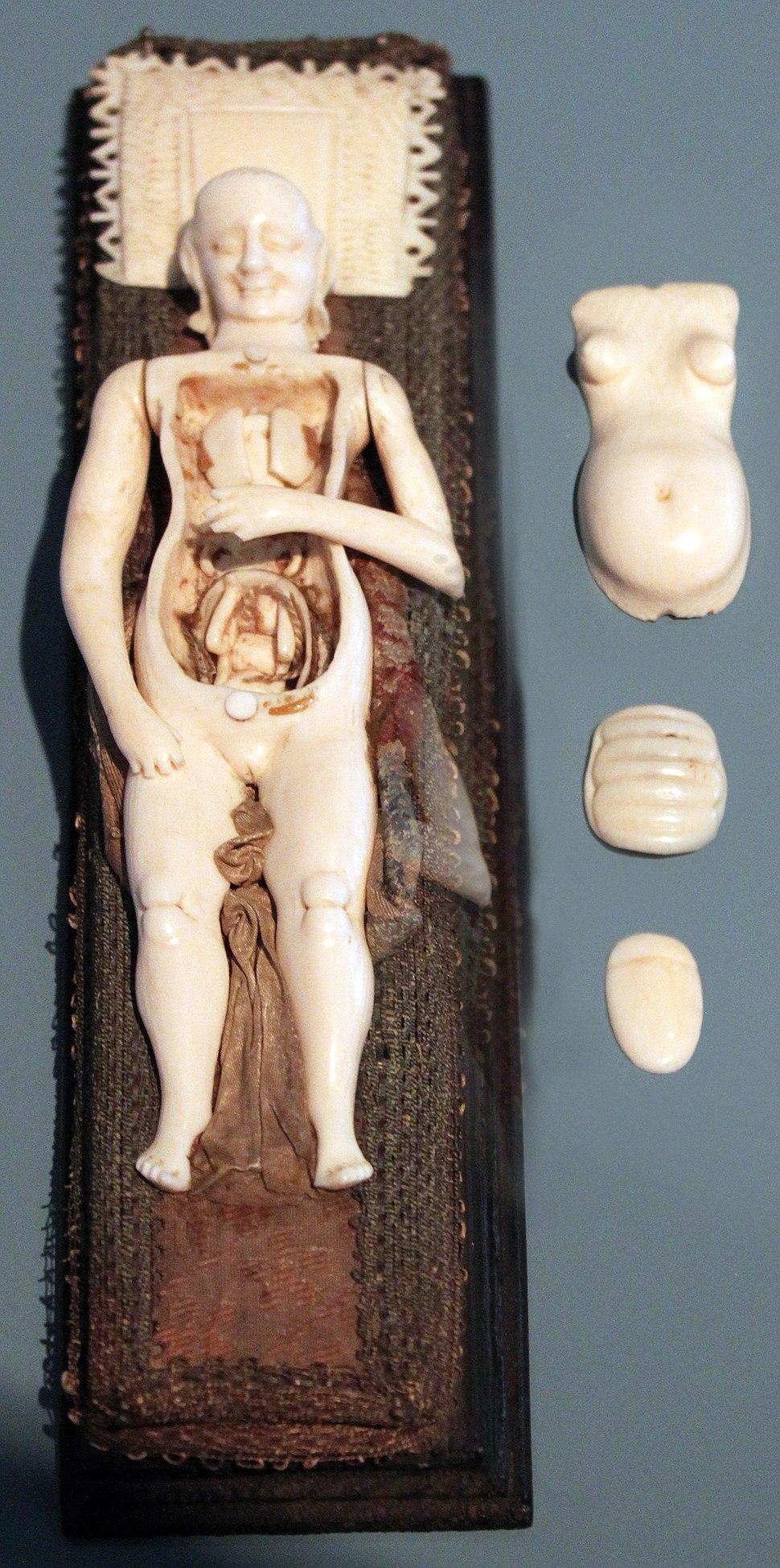 1700 Zick Anatomisches Modell einer schwangeren Frau anagoria
