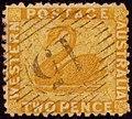 1865 2d Western Australia 15 Yv17 SG54.jpg
