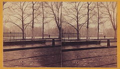 1866 New Orleans Snow Lafayette Square Stereocard.jpg