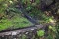 2012-10-27 13-23-40 Pentax JH (49283853131).jpg