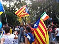 2012 Catalan independence protest (49).JPG