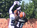 2015 Cleveland Browns Training Camp (19625967983).jpg
