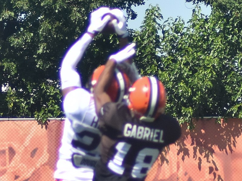 File:2015 Cleveland Browns Training Camp (19625967983).jpg