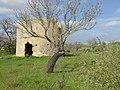 2017-02-05 Derelict windmill near Alcantarilha saltmarshes (1).JPG