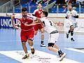 20170114 Handball AUT SUI 6232.jpg