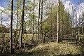 2019 05 Riezupes dabas parks (81).jpg