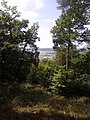 252 29 Dobřichovice, Czech Republic - panoramio (1).jpg