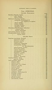 2 Harry Bolus - Orchids of South Africa - volume I (1896) - Index 2.jpg