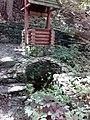 35-211-5004 Казавчинські скелі Лютинська 166.jpg