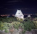 A View of the Nagoya Castle (49118101767).jpg