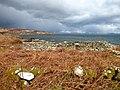 Abandoned houses at Port-na-Caranean, Rum - geograph.org.uk - 153409.jpg