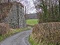 Abutments of Mid Wales Railway bridge - geograph.org.uk - 901824.jpg