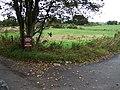 Access to Blackhall - geograph.org.uk - 581705.jpg