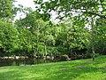 Afon Ogwen - geograph.org.uk - 815015.jpg