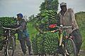 Africa0703-0905a - Flickr - Dave Proffer.jpg