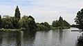 Aller flußaufwärts in Celle bei Pfennigbrücke 9979.jpg