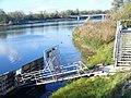 Am Rhein, Sasbach - geo.hlipp.de - 22631.jpg