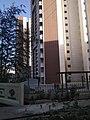 Amanora Gold Tower.jpg