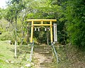Amenoshirahano shrine - ibaraki - yellow torii - 2019-4-29.jpg