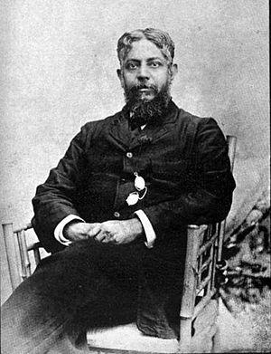 Anandamohan Bose - Anandamohan Bose
