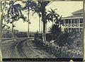 Ancon Hospital grounds, Panama Canal Zone; the Tivoli Hotel Wellcome V0030230.jpg