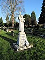 Angel in the cemetery - geograph.org.uk - 1633816.jpg