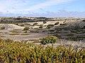 Anholt - panoramio.jpg
