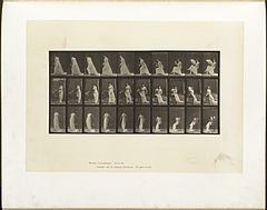 Animal locomotion. Plate 246 (Boston Public Library).jpg