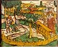 Apiculture en Alsace Medicinarius 1509.jpg