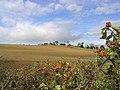Arable farmland east of Wallington Newhouses - geograph.org.uk - 549524.jpg