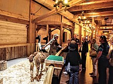 Ark Encounter Wikipedia