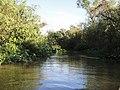 Arroyito que surte a una laguna (4.12m) - panoramio.jpg
