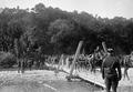 Artillerie Überqueren Behelfsbrücke - CH-BAR - 3236484.tif