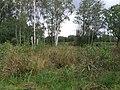 Askham Bog (geograph 2061146).jpg