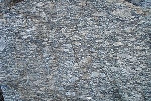 Augen - A Gneiss with large eye-shaped feldspars