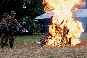 Regional Assistance Mission to Solomon Islands - Australian soldiers assigned to RAMSI burning guns in October 2003