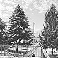 Avellino Parco Castagno San Francesco.jpg