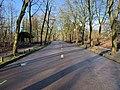 Avenue Fontenay Paris 1.jpg