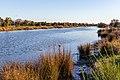 Avon River along New Brighton Road, Christchurch, New Zealand.jpg