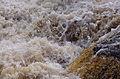 Aysgarth Falls MMB 64.jpg