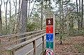 Bald Cypress Trail First Landing State Park-boardwalk (32364264514).jpg