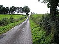Ballynahatty Road - geograph.org.uk - 1457949.jpg