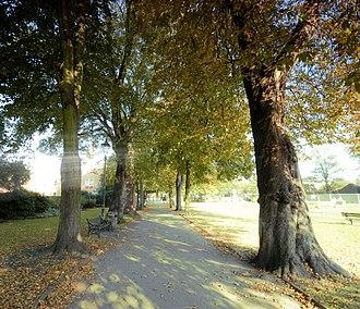 Lichfield District - A path in Beacon Park