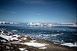 Beak Island, Antarctica.jpg