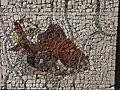 Belgrade zoo mosaic0135.JPG