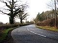 Bell Lane - geograph.org.uk - 1185909.jpg