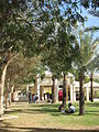 Ben Gurion University of the Negev - IsraelMFA 44.jpg