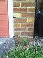 Benchmark on the garage of ^207 Churchill Avenue - geograph.org.uk - 2138818.jpg