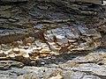 Bentonite (105.6 Ma) in the Dakota Sandstone (Lower Cretaceous) (Dinosaur Ridge, Colorado, USA) 7 (22219886931).jpg